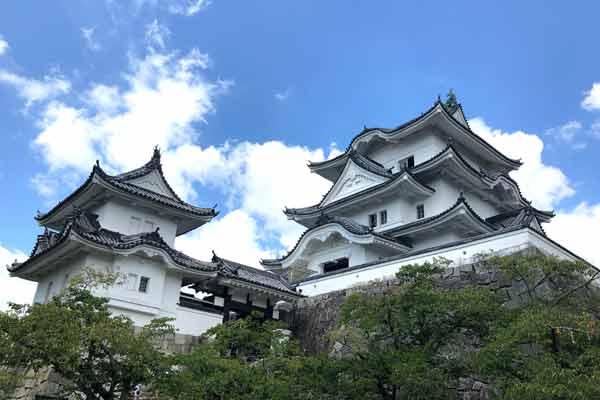 伊賀上野城の全体