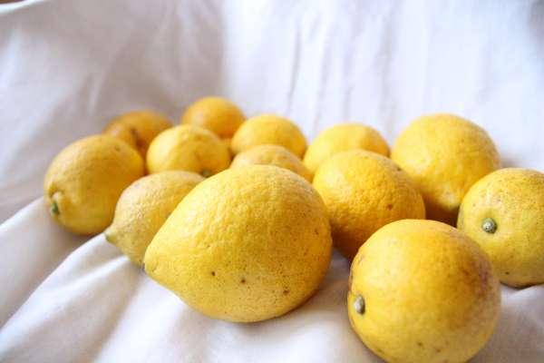 食べチョクのレモン