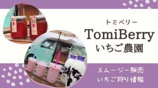 トミベリーのタイトル