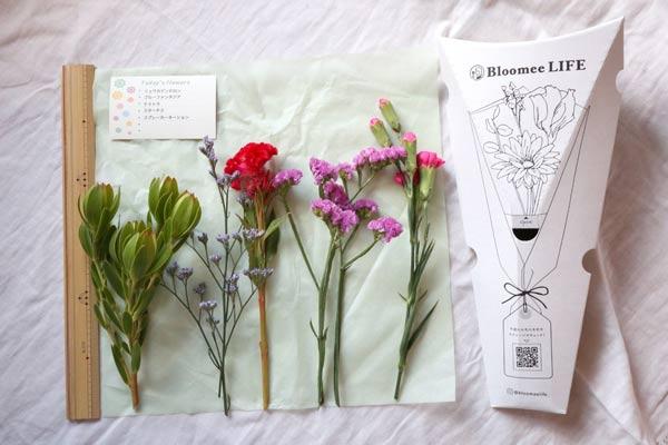 ブルーミーライフの花の長さ